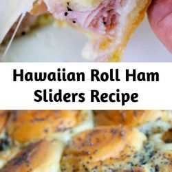 """These delicious little delights are great for a picnic, a party, a main dish or just a snack. They are a great """"go to"""" recipe when asked to bring something to any gathering."""