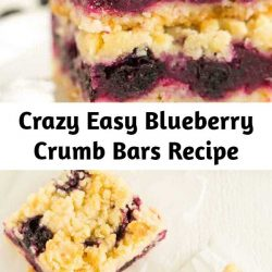 These blueberry crumb bars are crazy easy to make and could, dare I say, rival your favorite blueberry pie recipe. You can pick them up and eat them on the go, which makes them a perfect dessert for picnics and summer parties! #blueberrycrumbbars #crumbbars #blueberry #summerdessert #dessert